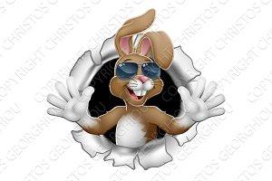 Easter Bunny Cool Rabbit Sunglasses