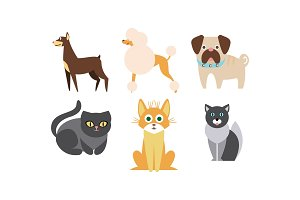 Cats and dogs of different breeds