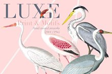 Luxe, Glamour and More! by  in Patterns
