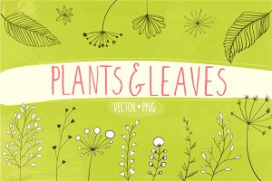 40 plants and leaves elements