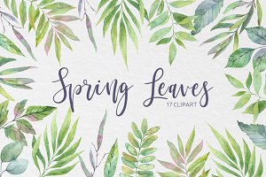 Spring leaves. Watercolor set