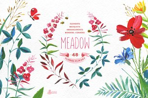 Meadow. Floral clipart