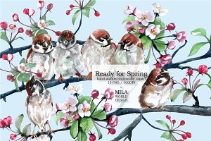 Sparrow and Cherry Blossom clipart