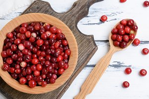 red berries of ripe lingonberries