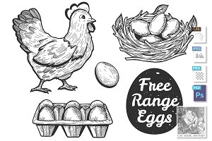 Free range eggs set