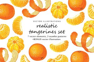 Vector set with realistic tangerine
