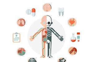 Human body anatomy concept