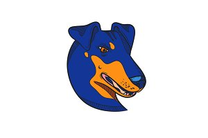 Manchester Terrier Dog Head Drawing