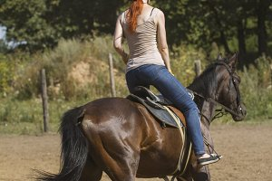 Red hair young on the horse - rear