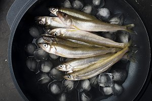 Fish smelt on ice in cast iron form