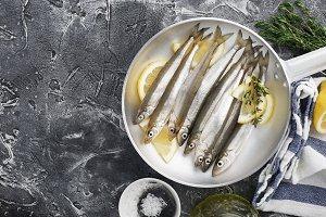 Small sea fish smelt or sardine