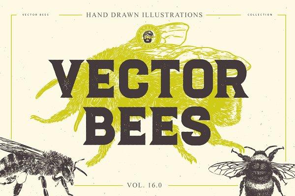 VECTOR BEES HAND DRAWN BUNDLE V.16…