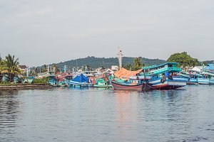 A group of colourful boats moored at
