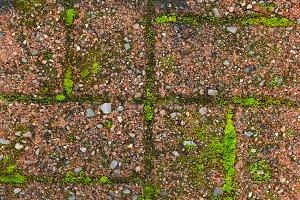 Red grunge brick wall texture