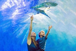 Mother and son looking at fish in a