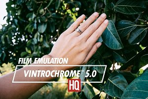 Vintrochrome™ 5.0 | Film Emulation