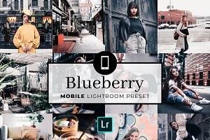 Mobile Lightroom Preset Blueberry