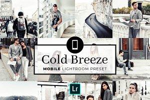 Mobile Lightroom Preset Cold Breeze