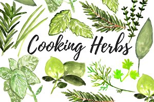 Watercolor cooking herb clipart