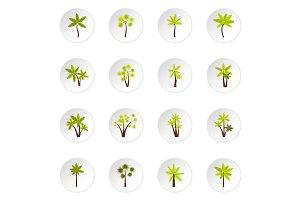 Palm tree icons set, flat style