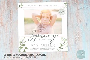 IE025 Spring Marketing Board
