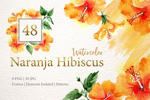 Naranja Hibiscus Watercolor png