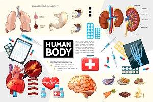 Cartoon human anatomy infographics