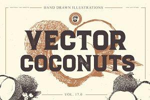 VECTOR COCONUTS HAND DRAWN BUNDLE