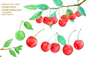 Watercolor Red Cherry Clipart
