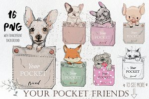 Your Pocket Friends