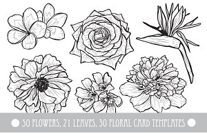 50 Hand Drawn Decorative Flowers Set