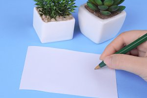 Woman hands writing on blank paper s