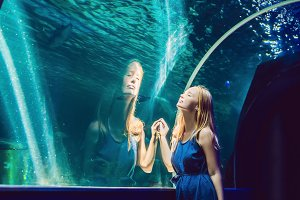 Young woman looking at fish in a