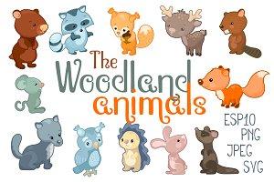 Woodland Animals Vector Clipart