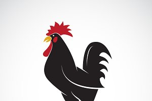 Vector of rooster or cock design.