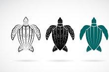Vector of gooseberry turtle design.