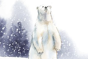 Polar beard in watercolor