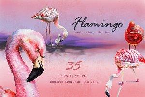 Flamingo Watercolor png