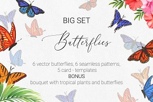 Butterflies. Patterns, cards etc