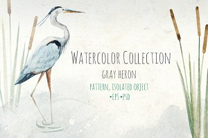 "Watercolor set of ""Grey Heron"""