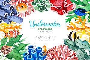 Underwater Creatures.
