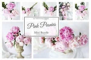 Pink Peonies Bundle - Stock Photos