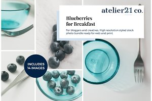 The Blueberries | Stock Photo Bundle