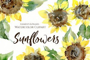 Watercolor Sunflower Flowers Leaves
