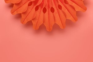 Living coral background and paper ro