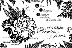 Vintage Peonies and Ferns Graphics