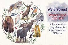 Wild forest watercolor clipart