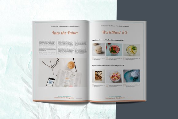 E-course Workbook / Opt-in Template in Magazine Templates - product preview 8