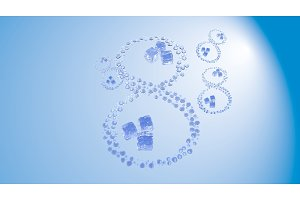 8 March. Figure of eight made of