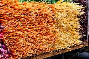 Orange baby carrots and radish piled